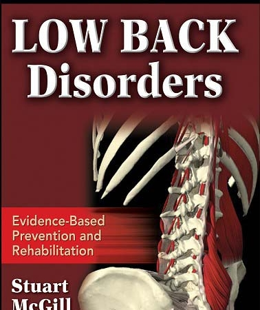 low_back_disorders2